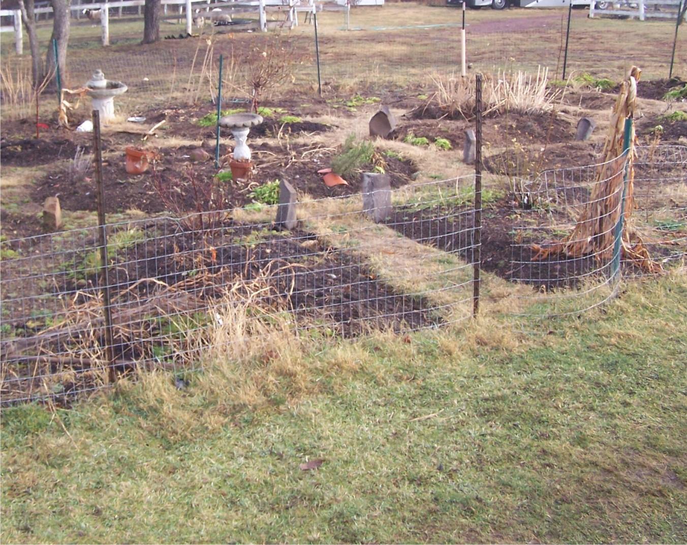 gardenbeforewattle