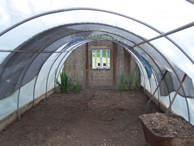 empty hoop house
