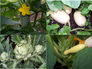 Vegetables Grown at Meduseld